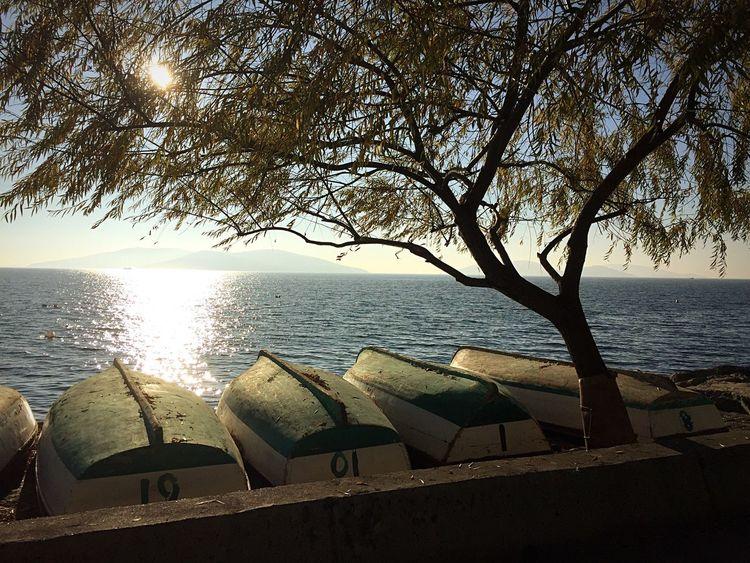 Marmara Sea Istanbul Turkey Kartal Boats Trees Water Reflections Autumn Colors Autumn🍁🍁🍁