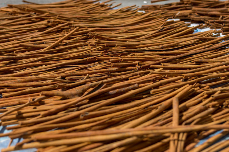Full frame shot of cinnamon sticks drying outdoors