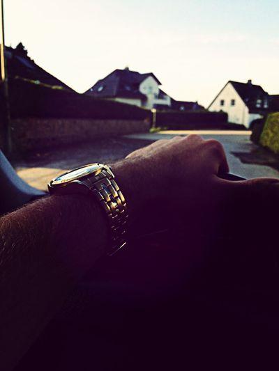 Festina Gold Watch Autumn