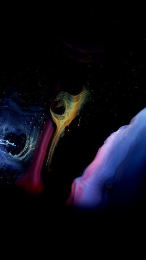 UnderSea Space Black Background Swimming Water Underwater Sea Life Multi Colored Close-up