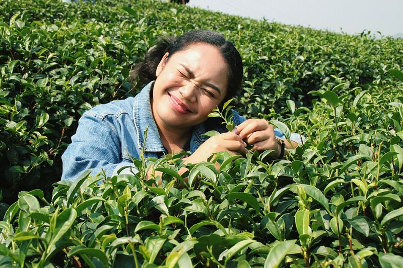 Young woman making face amidst tea crops during sunny day