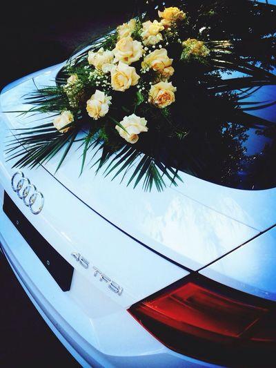 TT for wedding Enjoying Life Leica New Car My Car Aud