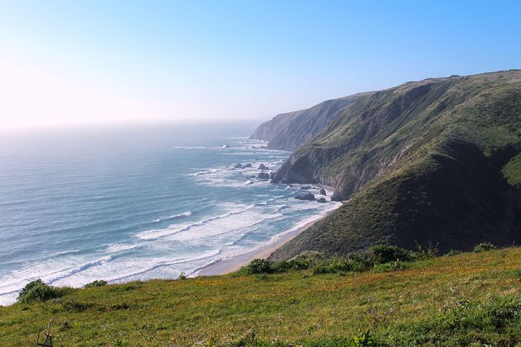 Sea Nature Clear Sky Beauty In Nature Scenics Horizon Over Water Tranquility Water Tranquil Scene Beach No People Day Outdoors Wave Sky Tomales Bay Hiking Norcal Pacific Ocean Pacific California California Coast Point Reyes National Seashore Point Reyes Sommergefühle