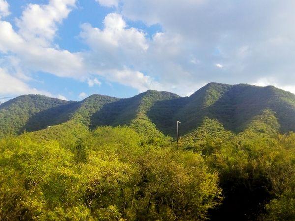 Hills Cerros View Vista Nature Naturaleza Breathtaking Trees Arboles Green Verde Beauty In Nature Love