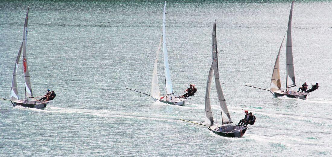 Sailboats racing on sea