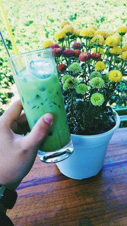Matcha Tea Matcha Green Tea Matchalover Flowers Flower Photography Flowers 🌸🌸🌸 Garden Photography Garden Flowers