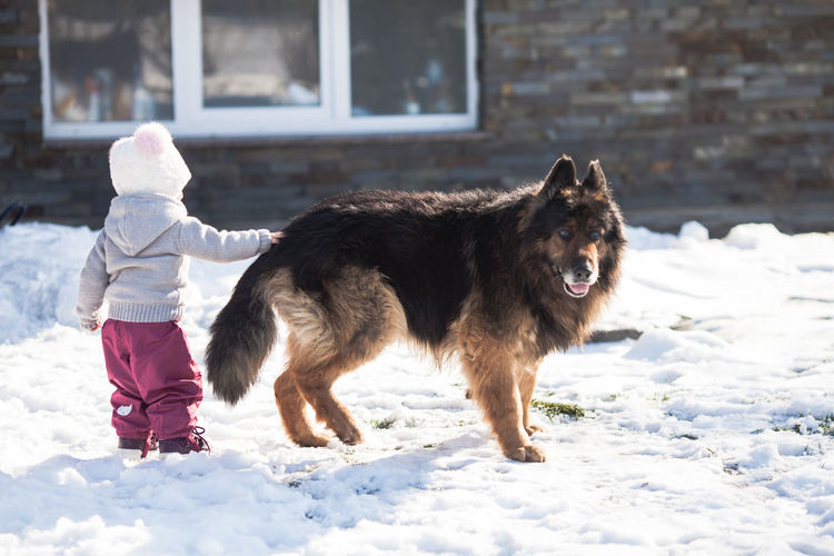 Girl with dog on snow