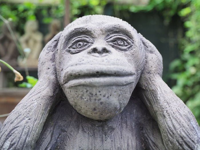 Monkey Sitting Close Ear Portrait Statue Sculpture Arts Culture And Entertainment Close-up HEAD Animal Eye Eye Nose Ear Skin