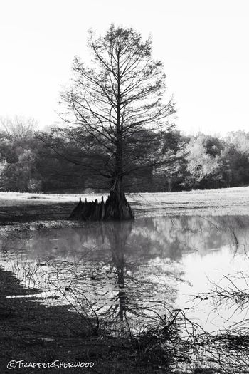 Water Reflections Water_ Collection  EyeEm Best Shots - Black + White Monochrome_Monday