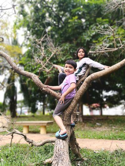 Children Tree Climbing A Boy And A Girl Siblings Child Smiling Young Women Childhood Togetherness Happiness Playing Fun Cheerful