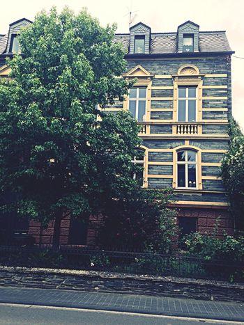 House Architecture Brauneberg Tree