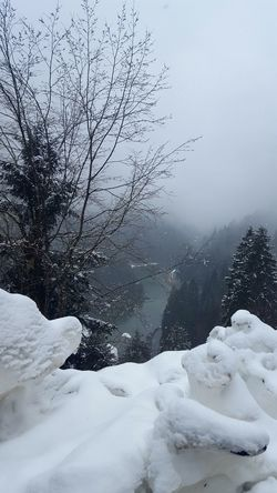 Day Perching Huzur Trabzon Uzungol Turkey Uzungöl Beauty In Nature Communication Technology Match - Sport Vacations Winter One Animal Outdoors Water Flying Internet Sunlight Spider Web Close-up Animals In The Wild Travel Destinations Leisure Activity Cold Temperature Global Communications Snowing