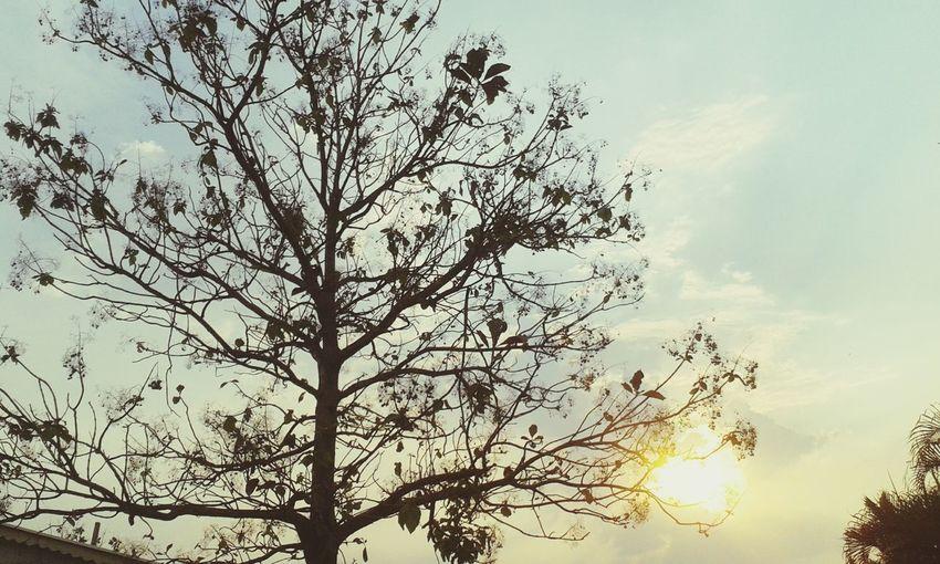 Sun Sets Sky