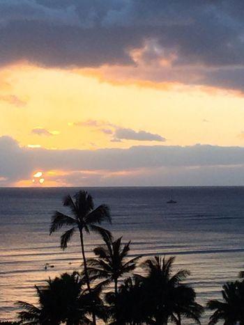 Island Of Oahu, Hawaii Waikiki Sunset Waikiki Waikiki Beach Setting Sun Over Ocean Palm Trees 🌴 Pacific Ocean View Pacific Ocean Sky No Edit/no Filter Pacific Sunset Cloud - Sky Silhouette No People An Eye For Travel