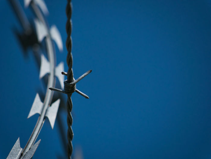 A pointy barbed wire and a sharp blade wire with blue sky as background Barbed Wire Iron Security Barricade Barrier Blackandwhite Blue Clear Sky Copy Space Day Defense Focus On Background Guard Low Angle View Metal No People Outdoors Pointed Prison Sharp Sky Steel Wire Stinging Nettles Sunlight Thread