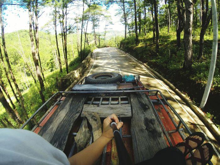 Top load. Tree Day Outdoors Nature People Human Hand Sky Sagada, Philippines Sagada Adventure Travel Destinations Vacations Sunlight Jeepney JeepneyMoments Gopro Explore Sagadaprovince