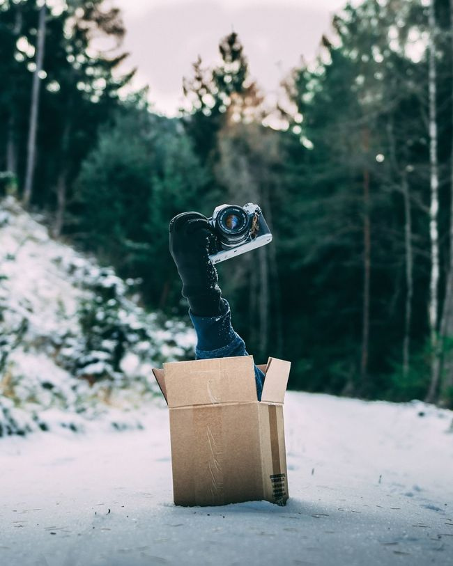 """I call it the """"mystery box 📦 """" Wintertime Winter Snow Trees Tree Landscape Layers Mood Captures Mood Mystery Mysterious Box Nikon Canon Bokeh Photography Bokeh Creative Photography Creativity Creativity Forest Photography Forest EyeEm Selects Focus On Foreground No People Outdoors Day Close-up Tree Nature"""