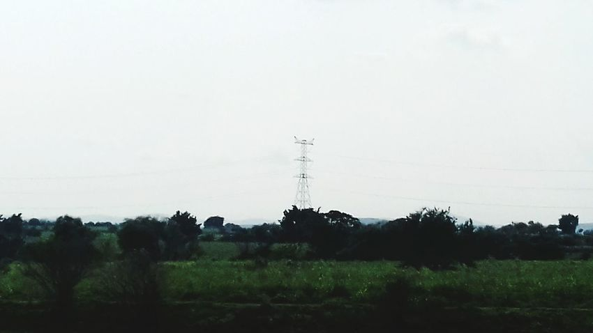 Tree Cable Electricity Pylon Landscape No People Electricity  Day Technology Outdoors Global Communications Sky