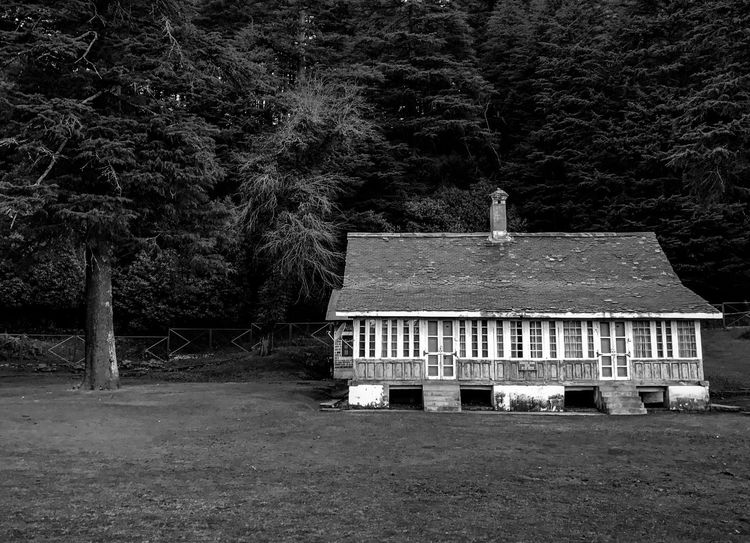 A house in the woods in Khajjiar, Himachal Pradesh. Holiday Khajjiar Travel Vacations Backgrounds Blackandwhite Building Exterior Built Structure Cottage Day Forest Getaway  Growth House In The Woods Nature Outdoors Tourism Travel Destinations Tree Vacation Wallpaper Woods