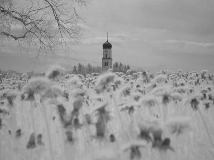 Church In Distance On Snow Covered Landscape