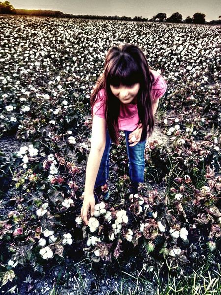 Cotton Field Girls One Person Child Outdoors Children Only One Girl Only Water Childhood Real People Day Nature Full Length People Adult