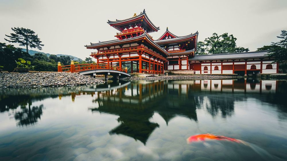Architecture Reflection Cultures Water Chinese New Year Day Chinese Lantern Festival Building Exterior Architecture Reflection Cultures Water Chinese New Year Red Building Exterior Travel Destinations Built Structure Outdoors Sky Chinese Lantern Festival Tree No People Day Carpe Koi Carpe