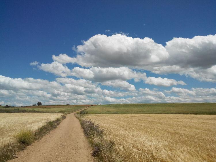 Camino CaminodeSantiago Clouds El Camino De Santiago Jakobsweg Landscape Pilgern Pilgrimage Rast Rest Sommer Summer Way Way Of Saint James Weg Wolken