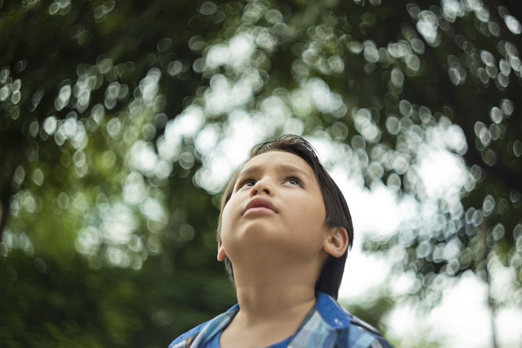 Low Angle View Of Boy Looking Up At Park