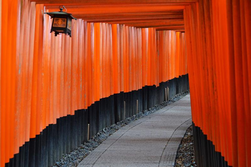 Walking pathway of thousand tori gates in fushimi inari shrine leading to the wood forest