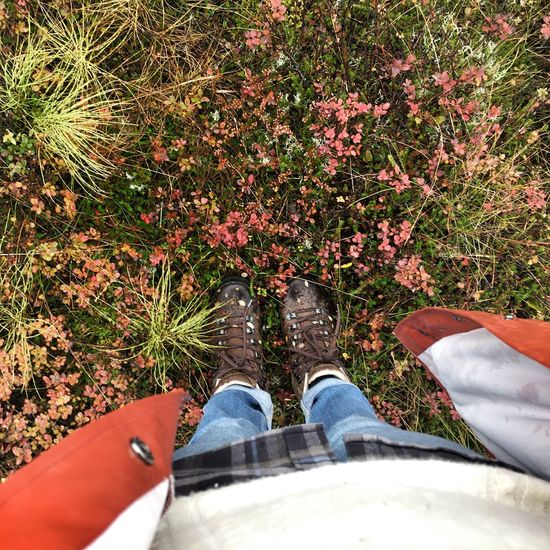 Trekking Wet Ground Trekking Shoes
