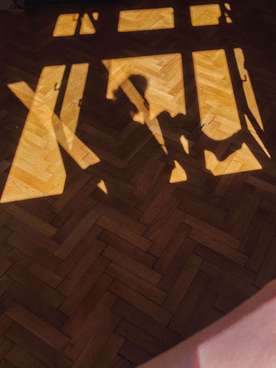 High angle view of shadow on hardwood floor at home