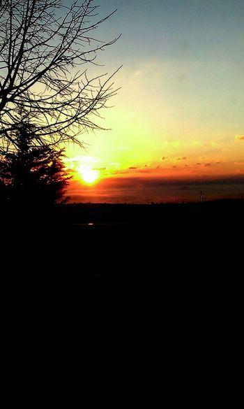 #Blue #happy Dayyyy! #nickiminaj #shadow Of Tree #SUN SUN SUN #Sunrise #TURKEY/Kocaeli #yellow