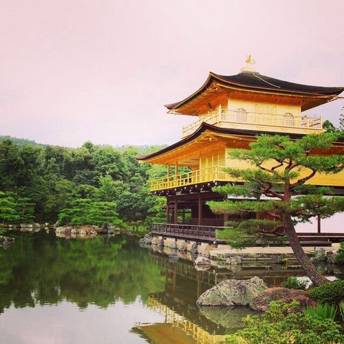At 鹿苑寺(金閣寺) Kinkaku-ji Temple
