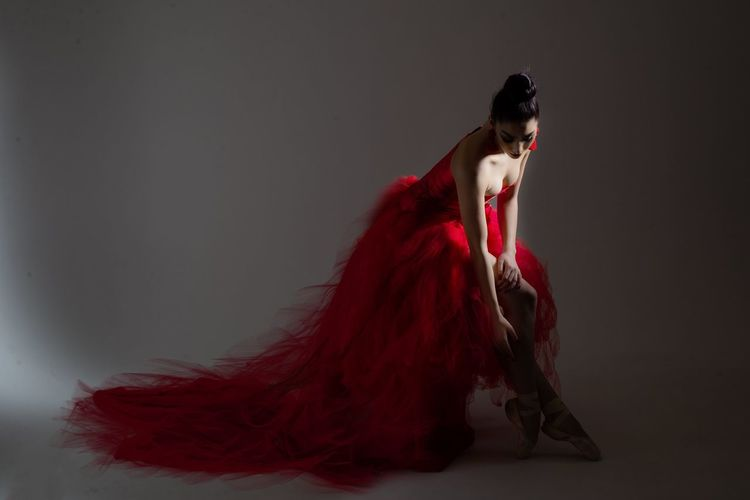 Dress Red One Animal Indoors  Studio Shot Full Length Clothing Wall - Building Feature Hair Fashion Hairstyle
