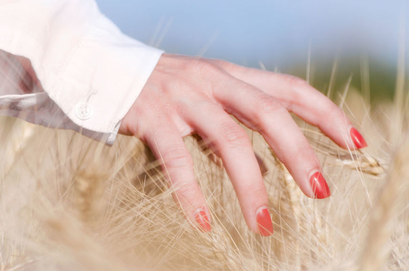 Close-up of woman hands