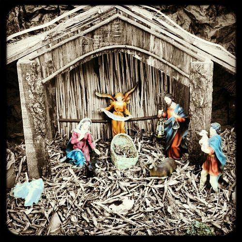 Nacimiento Zacatecas Boris700mx Fresnillo Niño Jesús