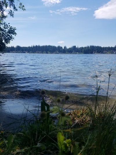 Lake Water Nature Outdoors Tranquility Cloud - Sky Landscape No People Beach Sky Day Tree Scenics Beauty In Nature Grass