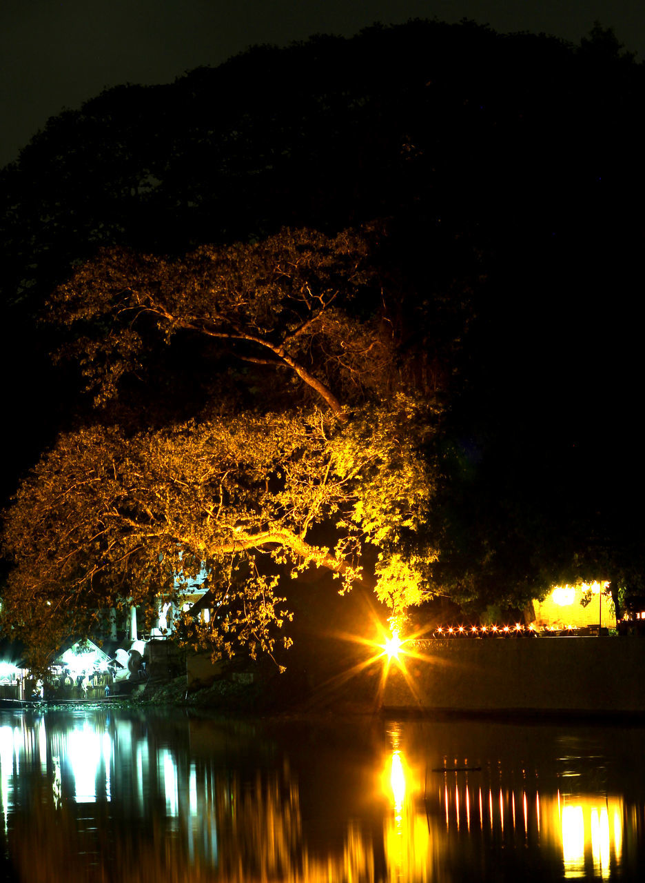 tree, reflection, water, nature, lake, night, illuminated, outdoors, tranquil scene, beauty in nature, no people, silhouette, tranquility, scenics, growth, sunset, sky