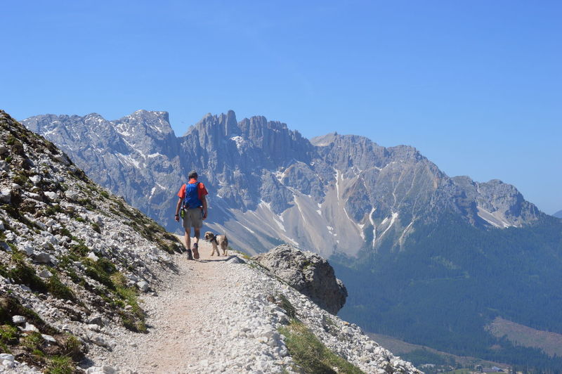 Rear view of man hiking on mountain against clear blue sky