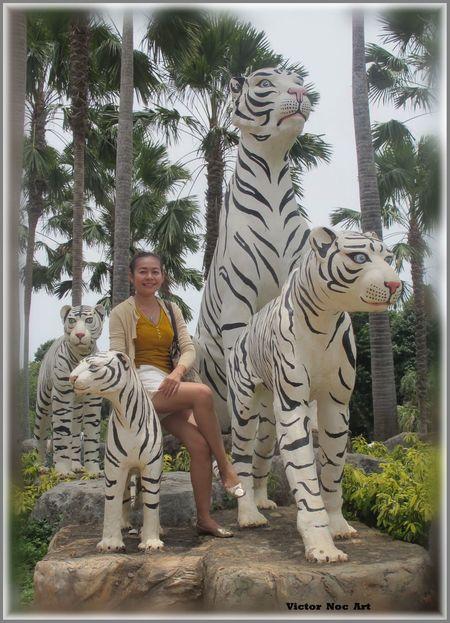 Nong Nooch Tropical Bothanical Garden Thailandia 2016 Pattaya City PUI Sfumature Scatti  😚 Vittorio Nocente Ragazze Thailandesi Victor Noc Art VittNoc VicNocArt Pattaya City VicNoc Photo Art Foto Art 👉 Artfoto Park Thailandia Noc Vittorio #