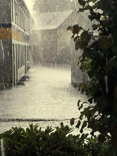 Its Raining Outside ): Architecture Outside Photography Sommerfeeling Waterfront The Architect - 2018 EyeEm Awards The Great Outdoors - 2018 EyeEm Awards EyeEmNewHere