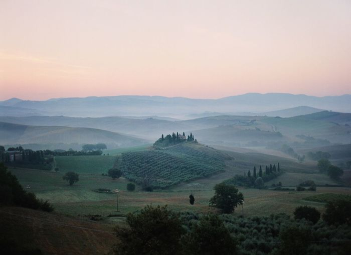 Val d'Orcia Tuscany EyeEm Italy Filmphotography Chianti Scenics - Nature Plant Landscape Sky Tree Environment Tranquil Scene Beauty In Nature Tranquility Nature Mountain Mountain Range Fog No People Travel Destinations Land