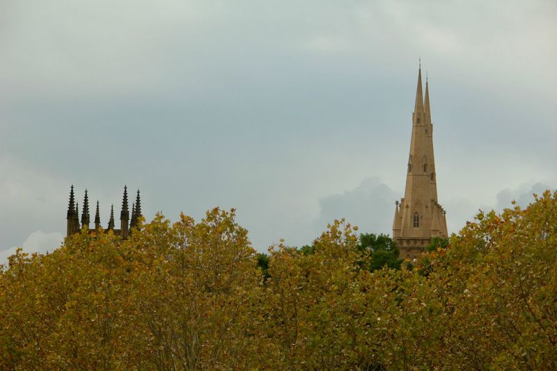 Cathederal Hyde Park, Sydney Architecture Belief Building Building Exterior Built Structure Cloud - Sky Day Growth Low Angle View Nature No People Outdoors Place Of Worship Plant Religion Sky Spire  Spirituality Steeple Tower Tree