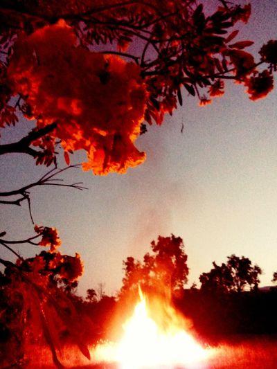 001tropics Night Fires First Eyeem Photo
