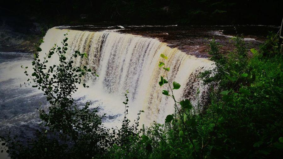 Waterfall Tahquamenon Falls Upper Peninsula Michigan Tahqamenon Falls State Park Summer Tahquamenon River