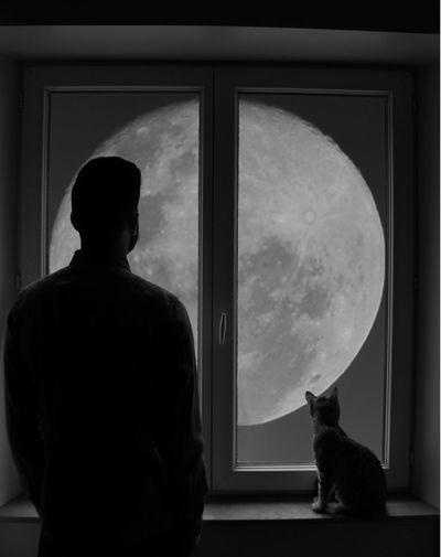 Grenoble Cat Moon