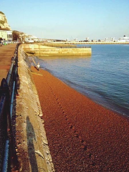 Dover Ferry Sea Pebbles Beach