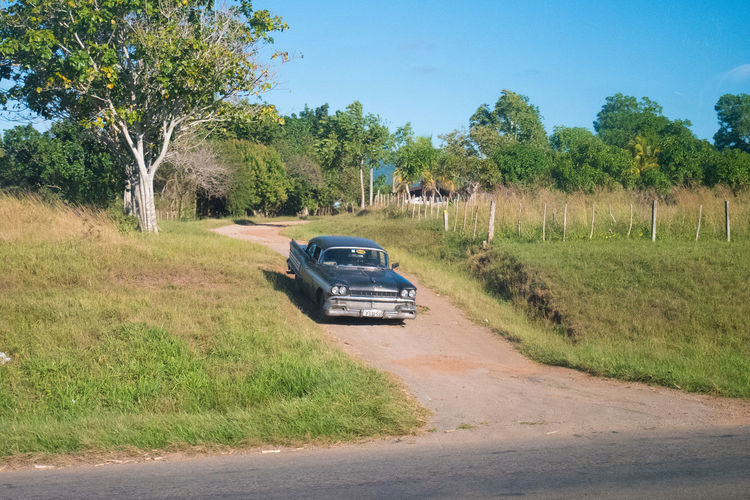Cuba Car Carribean Day Grass Growth Highway Land Vehicle Mode Of Transport Nature No People Outdoors Road Sky Transportation Tree