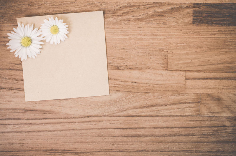 Directly above shot of daisy flowers with paper on hardwood floor
