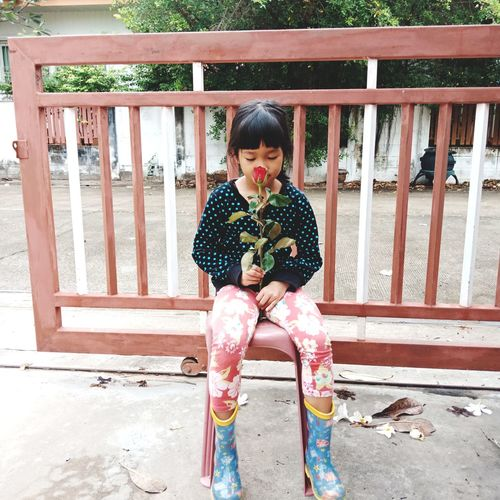 Full length of girl smelling flower while sitting on seat against gate